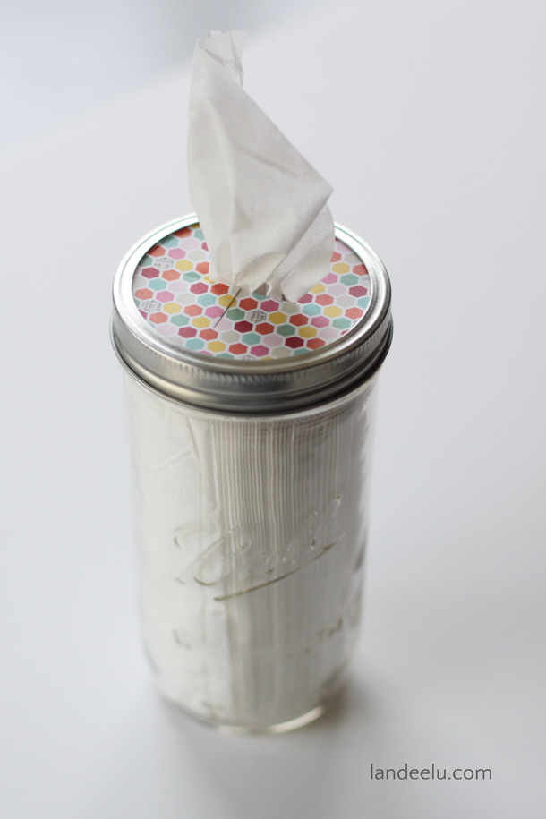 DIY-Mason-Jar-Tissue-Holder.jpg